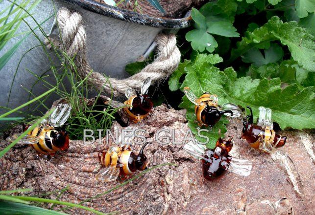 Bienen 002 - Kopie
